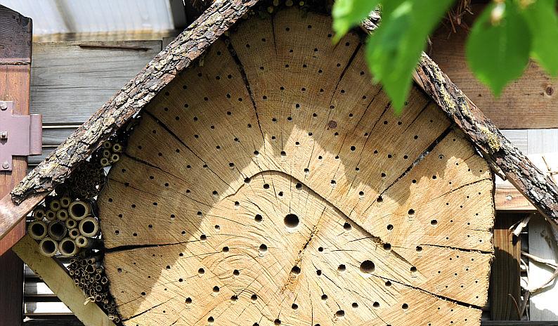 insektenhotel kaufen insektenhotel im g nstig kaufen sch nes insektenhotel insektenhotel g. Black Bedroom Furniture Sets. Home Design Ideas